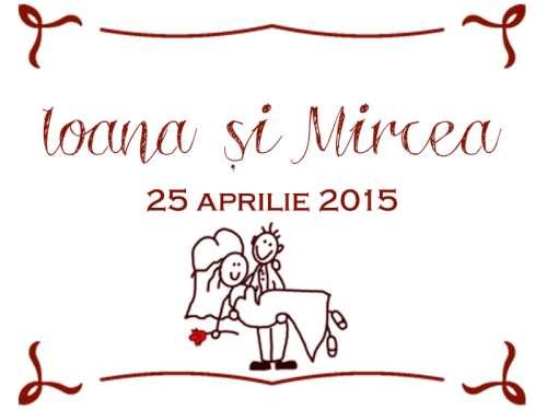 Ioana și Mircea