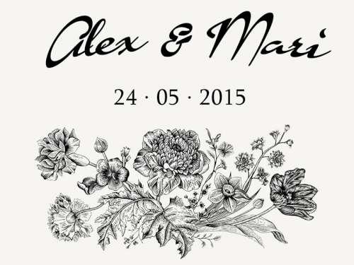 Alex & Mari