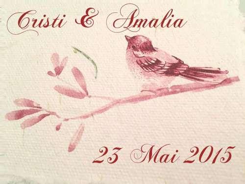 Cristi & Amalia