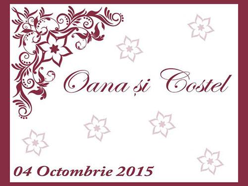 Oana & Costel