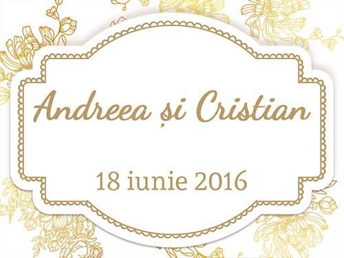 Andreea & Cristian
