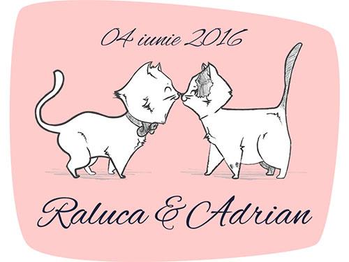 Raluca & Adrian
