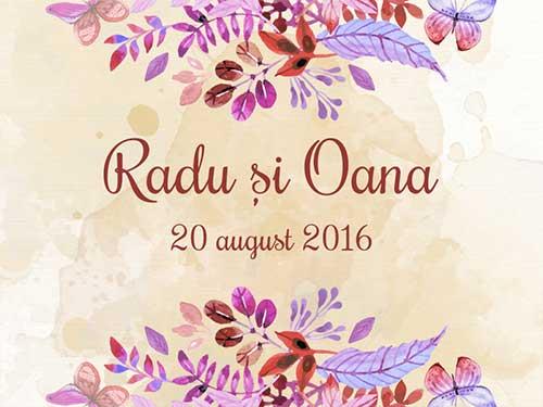 Radu & Oana