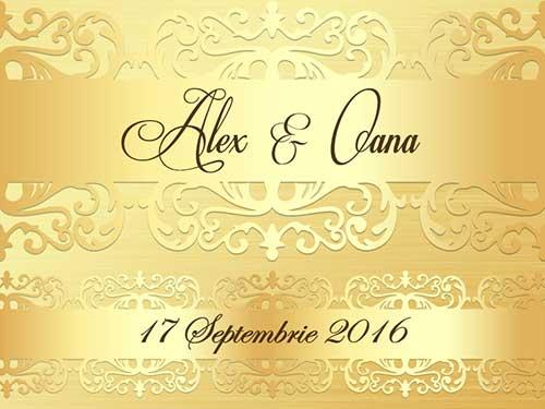 Alex & Oana